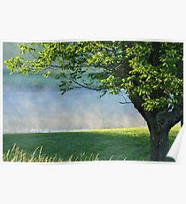Misty morning pond scene Poster