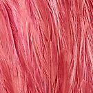 Pink Feather Teture by Digitalbcon