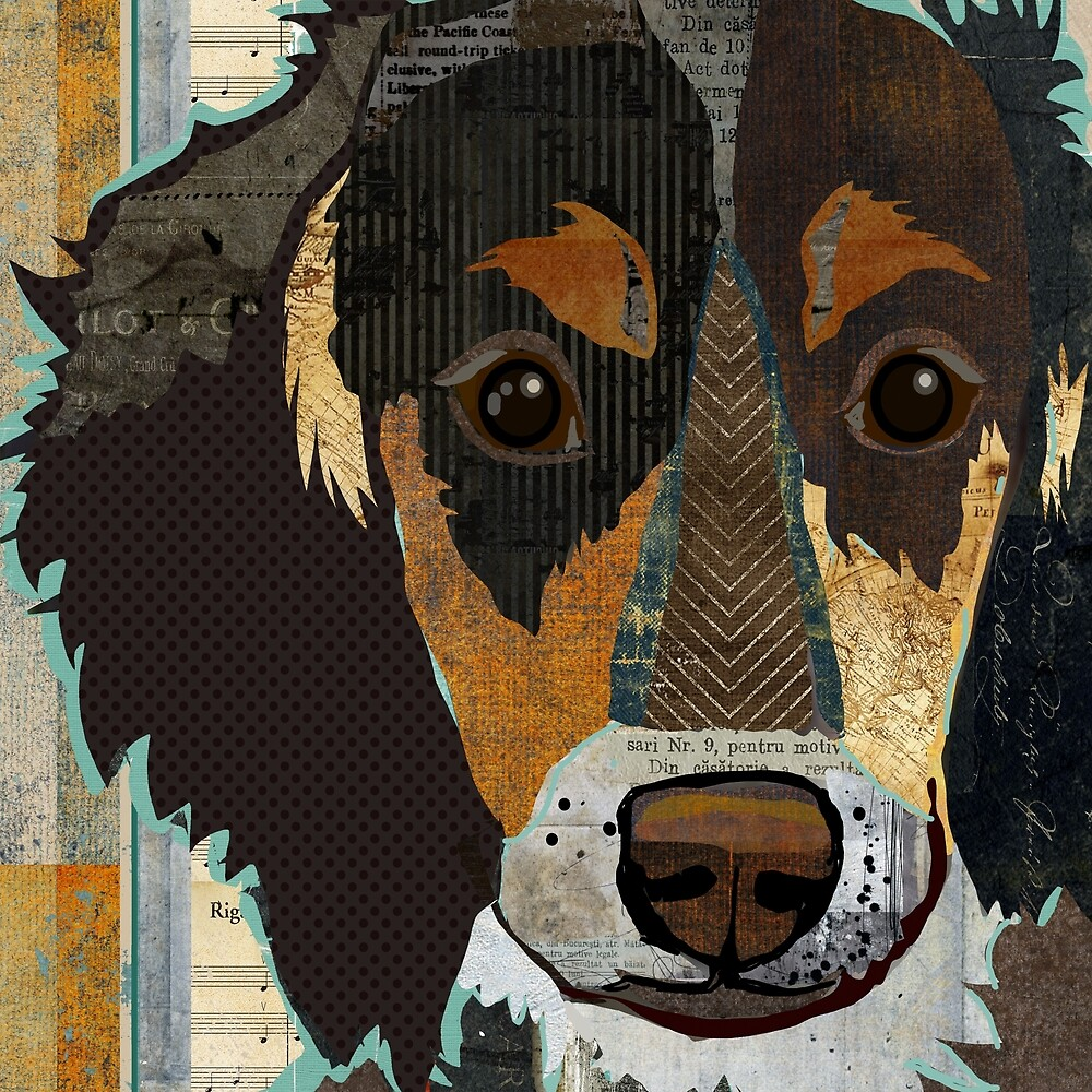 Dachshund / Weiner Dog Portrait Colorful Collage Art  by traciwithani