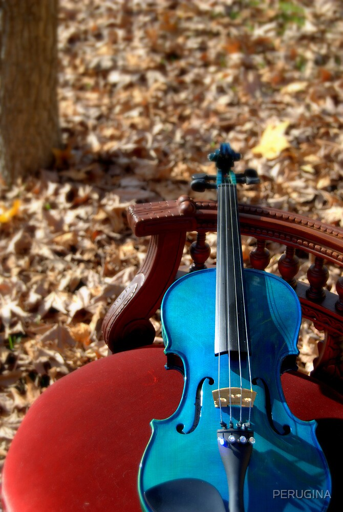 il violino blu on red velvet chair © 2010 patricia vannucci  by PERUGINA
