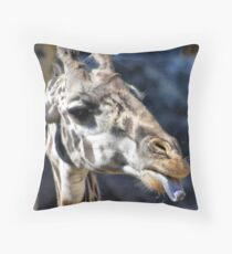 Economy Throw Pillow