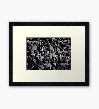 Grey Day Framed Print