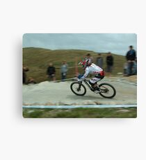 Tracey Moseley Canvas Print