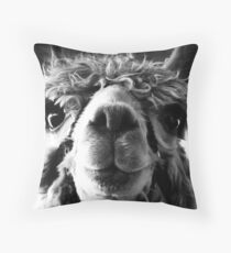 Say Cheese and Smile Pretty! Throw Pillow