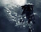 never alone by Angel Warda