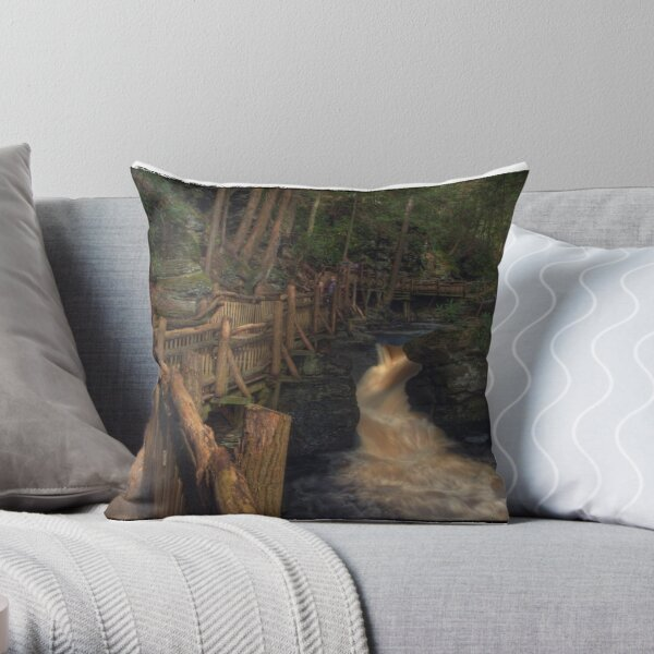 Upper Canyon Throw Pillow