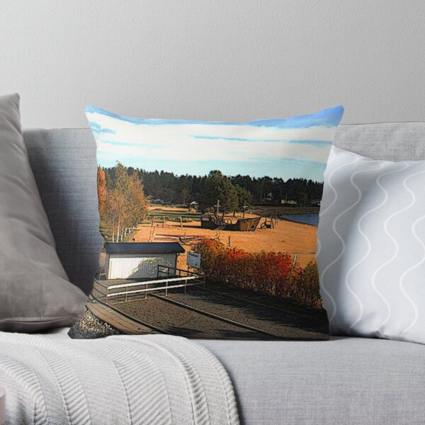 """Shipwreck - Skelleftea, Vasterbottens Lan, Sweden"" Throw Pillow"