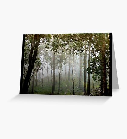 Eucalypts in the Mist Greeting Card