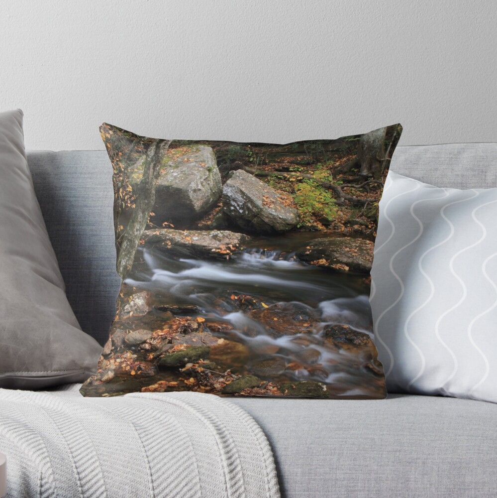 All Things Merge Into One Throw Pillow