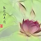 Lotus  by John Poon