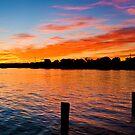 Noosa River Sunset, Queensland by Jaxybelle