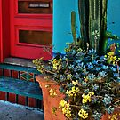 Red Door in the Barrio by Linda Gregory