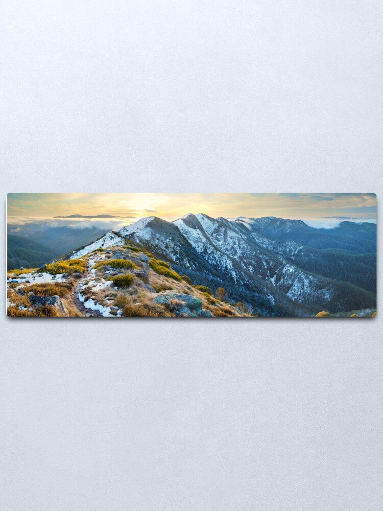 Alternate view of Cross Cut Saw, Mt Howitt, Alpine National Park, Victoria, Australia Metal Print