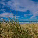 Peregian Beach 3 by Jaxybelle