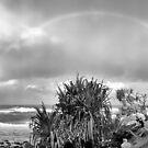 Headland rainbow by Murray Swift