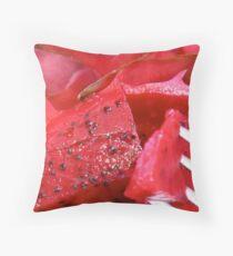 Pitaya  Throw Pillow
