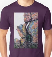 Cliff Boulders at Cochise Stronghold Unisex T-Shirt