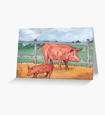 Tamworth Pigs Greeting Card