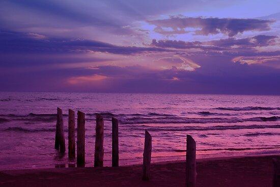 Sauble Beach at Dusk by Alyce Taylor