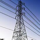 Power Lines by elledeegee