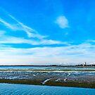 Schongebiet von Barbana in der Lagune von Grado, Italien von zakaz86