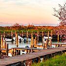 Frühlingssonnenuntergang in der Lagune von Grado von zakaz86