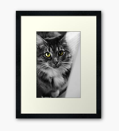Why can't I come back in? Framed Print
