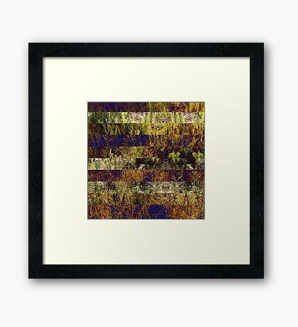 Super Natural No.4 Framed Print