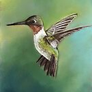 Ruby Throated Hummingbird Pastel Painting by Charlotte Yealey