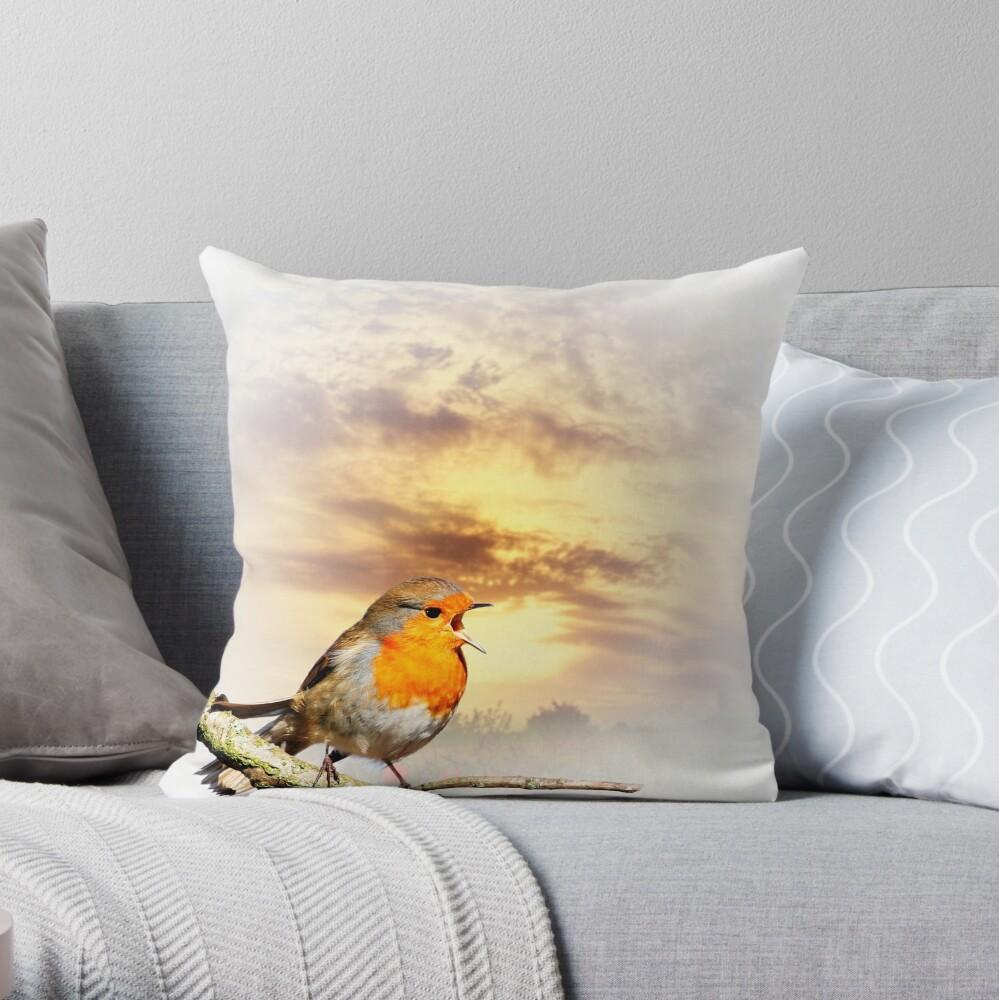 Robin At Sunset  Throw Pillow