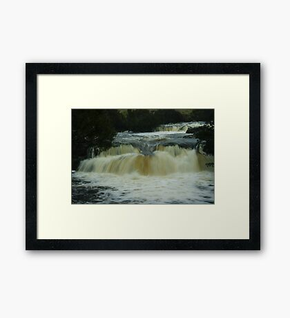Pencil Pine Falls Framed Print