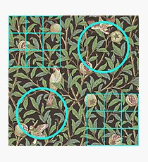 William Morris and Me Squares and Circles Photographic Print