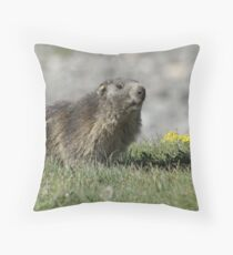Boss of the marmots Throw Pillow