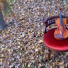 il violino su sedia di velluto rosso © 2010 patricia vannucci by PERUGINA