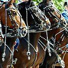 Horses!!,   Atteeeeeeen.....Shun.  by Alan Mattison