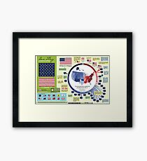 Our Flag: A Graphical History Framed Print