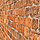 Brick Wall Texture by bryanbellars