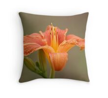 orange asiatic lily auf Redbubble von pASob-dESIGN