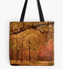Amber Afternoon Tote Bag