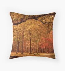 Amber Afternoon Throw Pillow