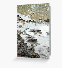 wet land Greeting Card