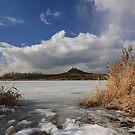 frozen lake by dagmar luhring