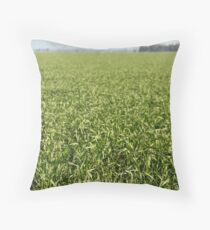 RIverina Wheat Throw Pillow