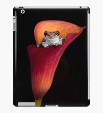 Cute Frog iPad Case/Skin