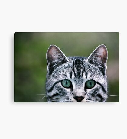 can you see me now? Canvas Print