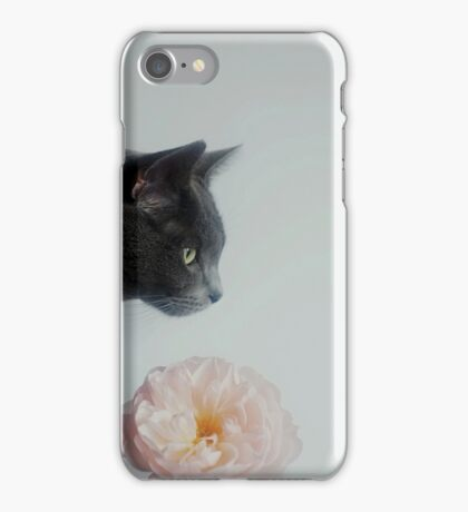 Russian Blue iPhone Case/Skin