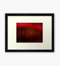 striation Framed Print
