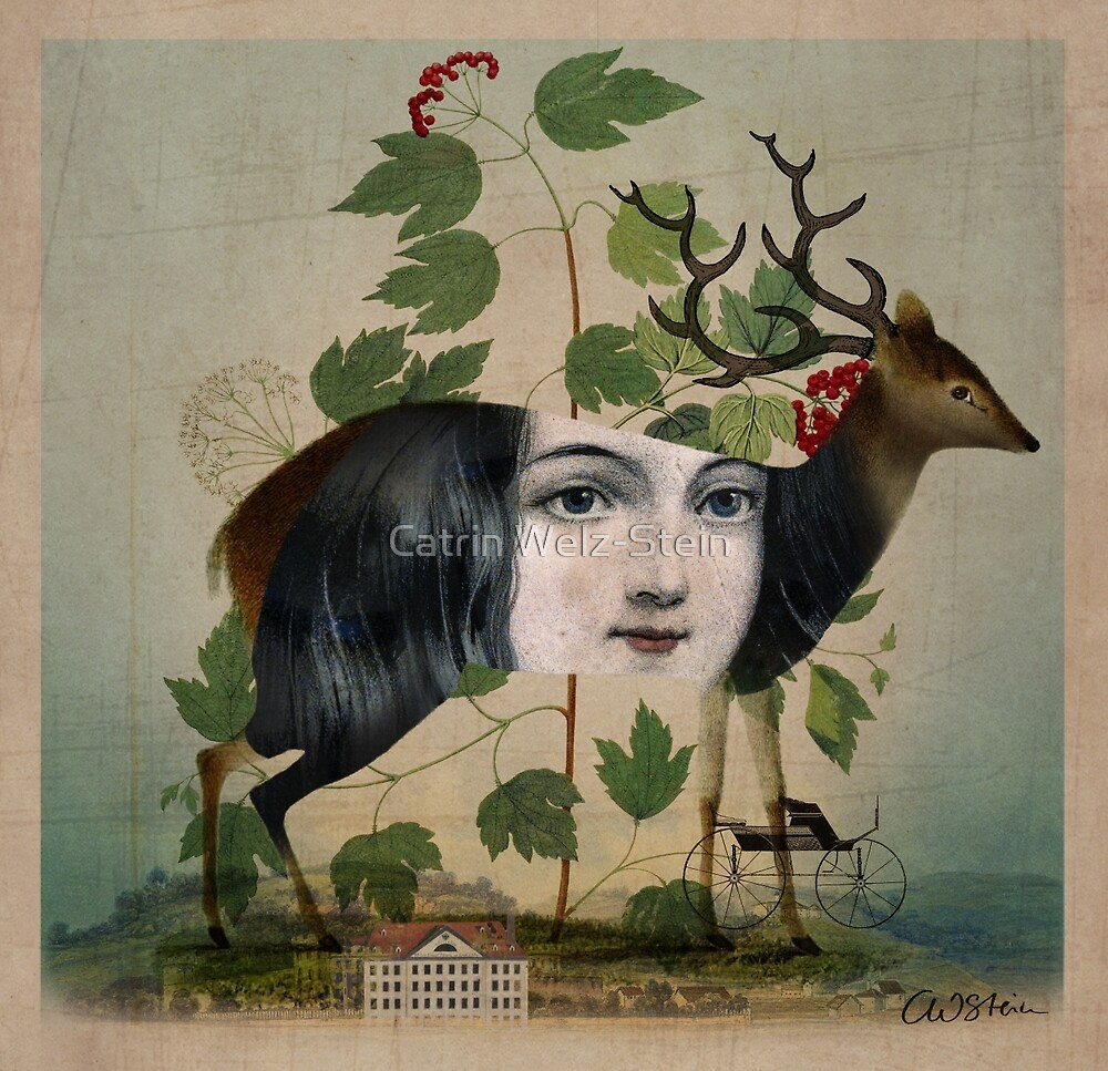 The Untold Story by Catrin Welz-Stein