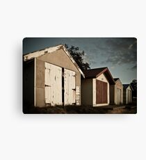 Summer's Passing Canvas Print