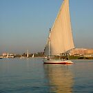 Felluca On the Nile.. by eithnemythen